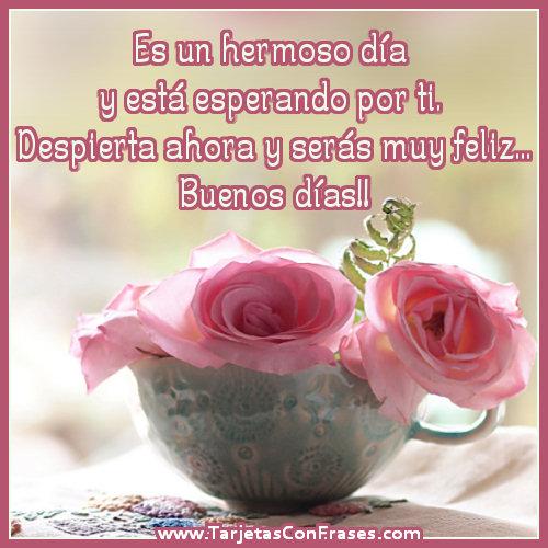 Una rosa para ti (Imagenes para Facebook)