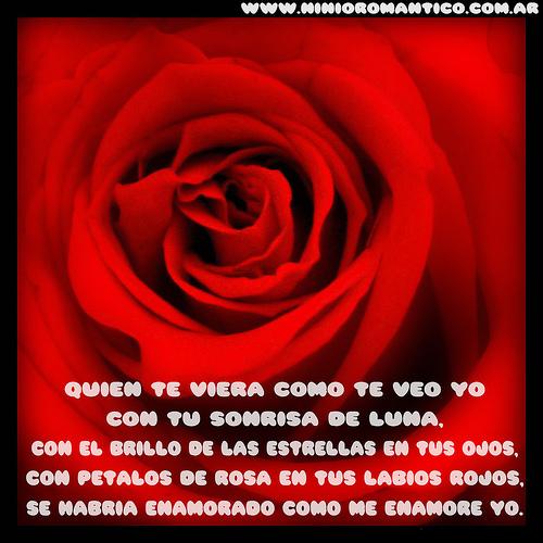 una rosa para ti 4 Una rosa para ti
