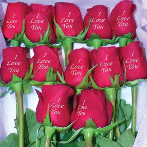 una rosa para ti 5 Una rosa para ti