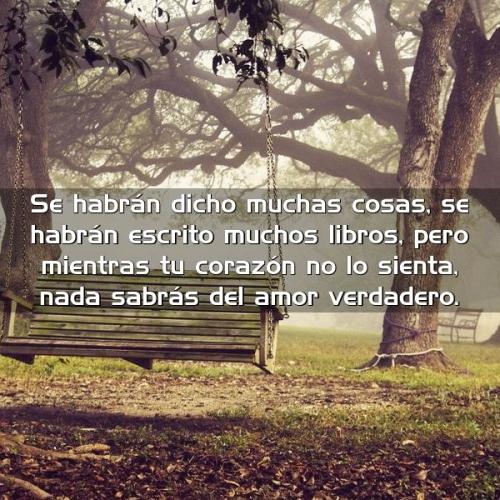 8 Se habrán dicho muchas cosas, se habrán escrito muchos libros, pero mientras tu corazón no sienta nada, sabrás del amor verdadero