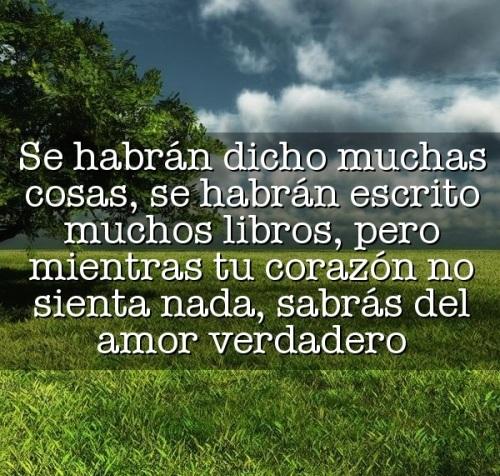 Se habrán dicho muchas cosas, se habrán escrito muchos libros, pero mientras tu corazón no sienta nada, sabrás del amor verdadero (Imagenes para Facebook)