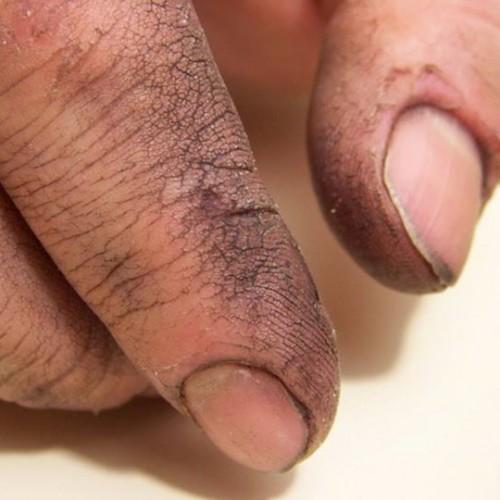 Las manos de papá 500x500 Las manos de papá