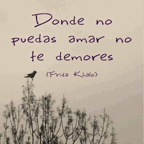fridakahlo Imágenes con Frases de Frida Kahlo