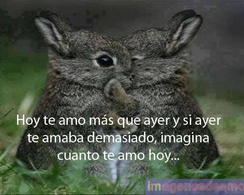 Conejitos Enamorados 500x400 Frases romanticas de conejos