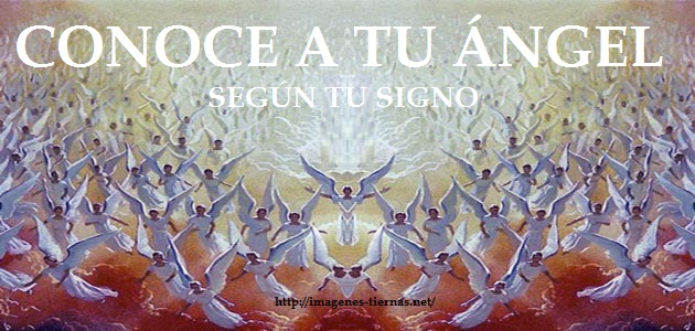 angel segun tu signo