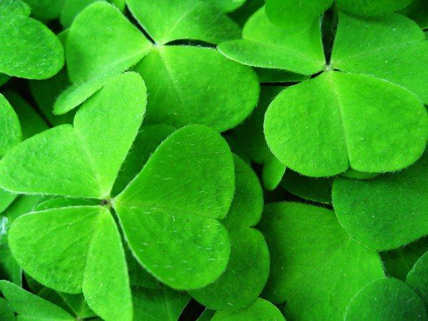 significado de color verde
