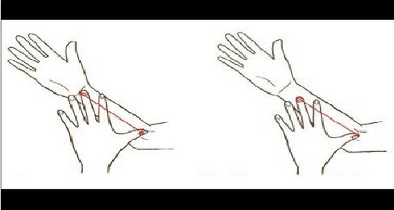 tamaño mano
