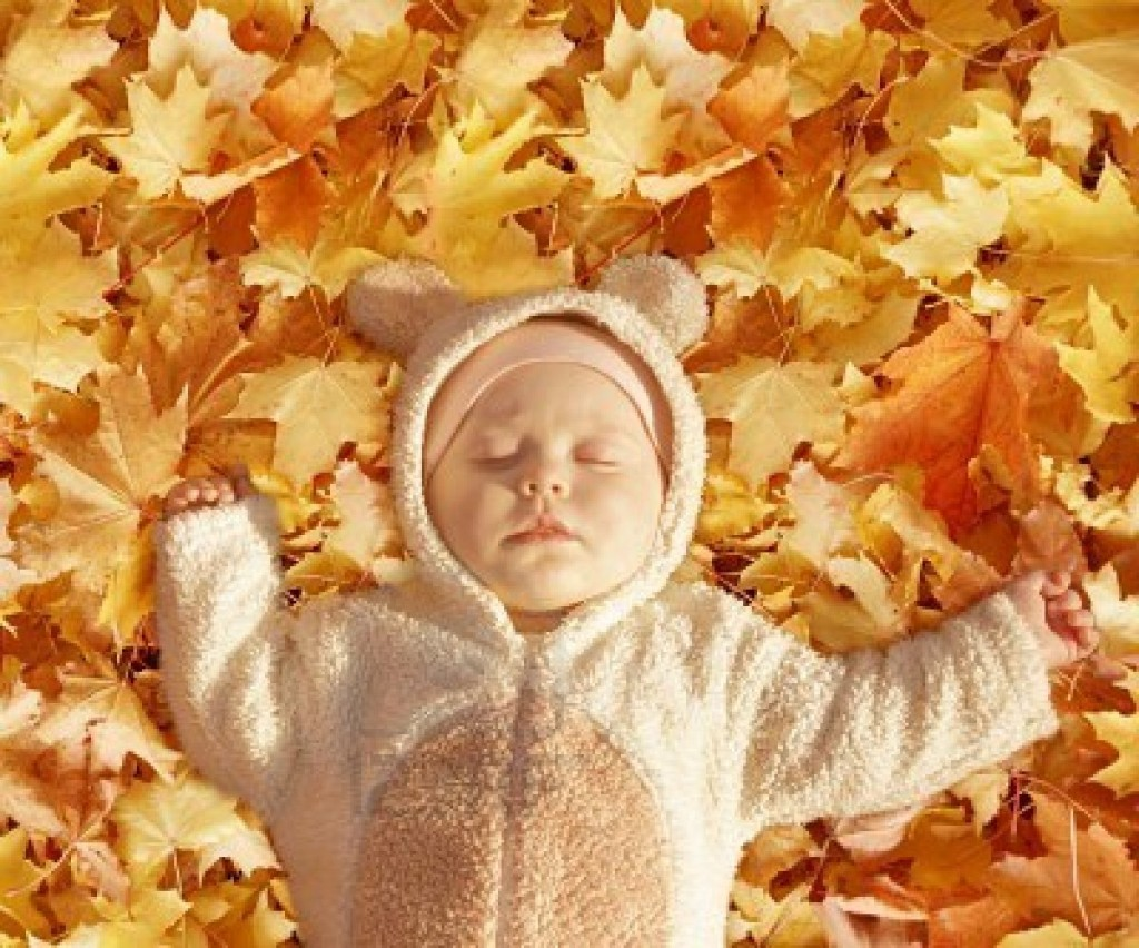 imagenes tiernas de otoño