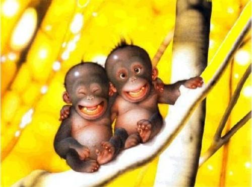 Monos sonriendos