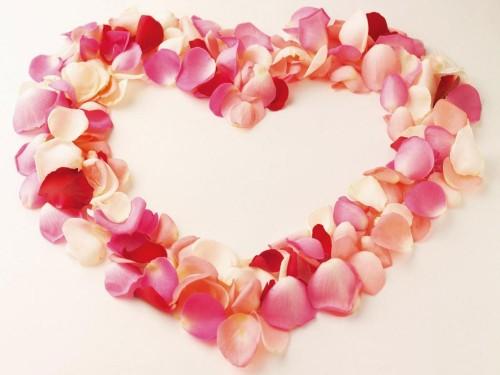 imagenes-romanticas-corazon-petalos-rosas