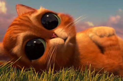gato con botas bebe