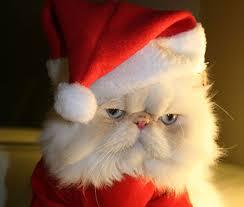 Imagenes navideñas1