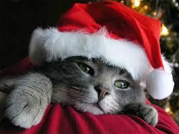 Imagenes navideñas2