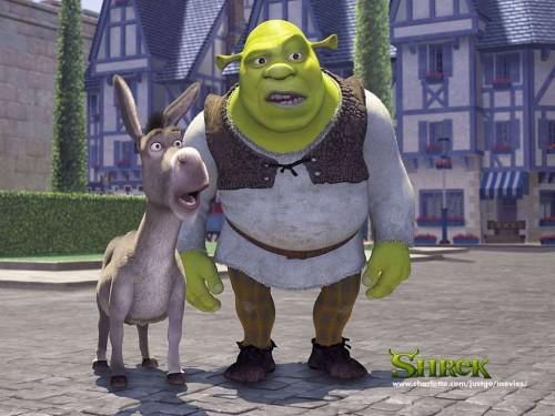 sherk y burro