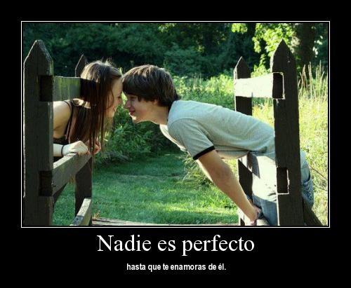 Nadie es perfecto hasta que te enamoras