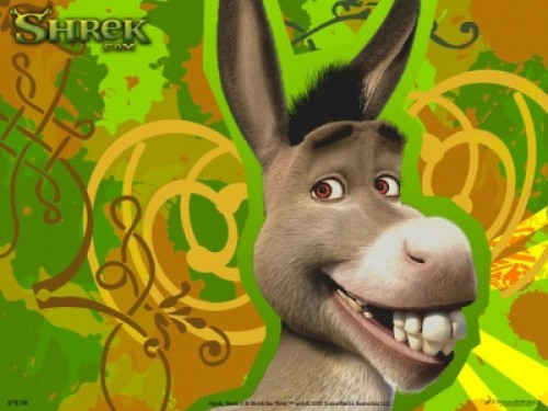 burro de sherk