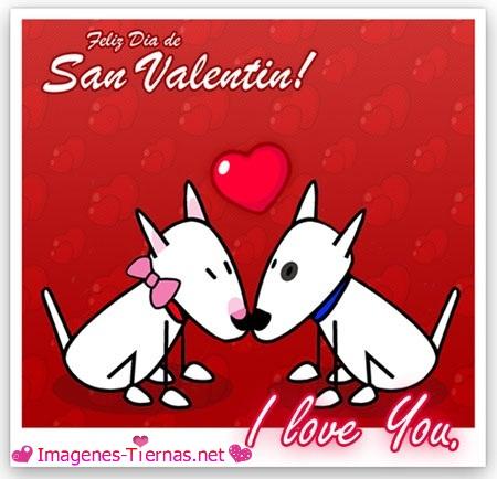 San Valentin Día del Amor y de la Amistad - Imágenes (3)