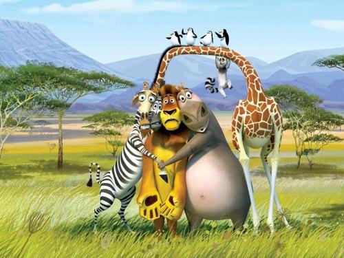 imagenes tiernas de Madagascar