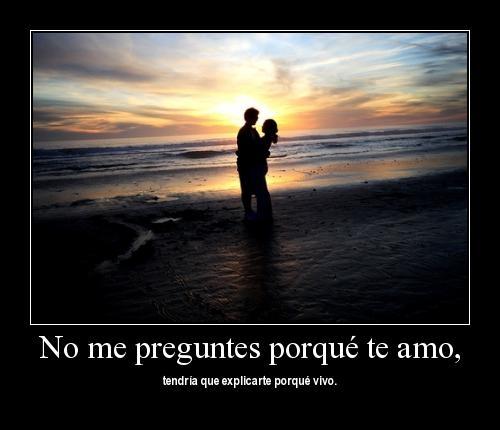 No me preguntes porque te amo, tendría que explicarte porque vivo
