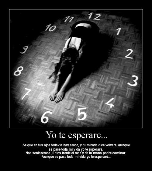 yo te esperare
