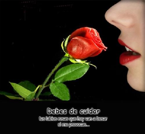 Labios y Rosas