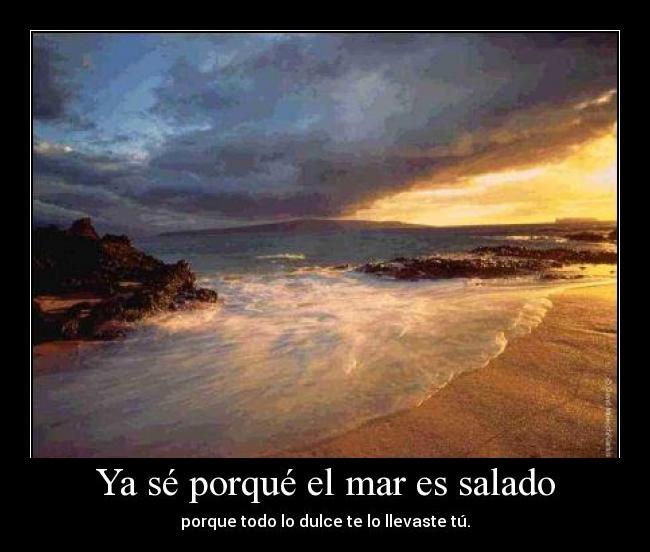 Ya sé porqué el mar es salado: porque todo lo dulce te lo llevaste tú