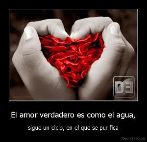 verdadero amor 5