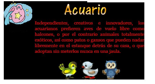 Acuario.png12