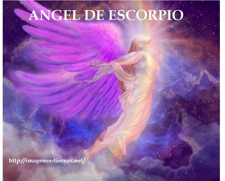 angel 10