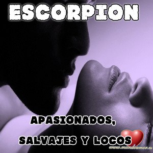 escorpion-1-300x300