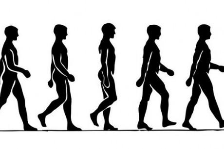 Como-caminar-correctamente1-460x307