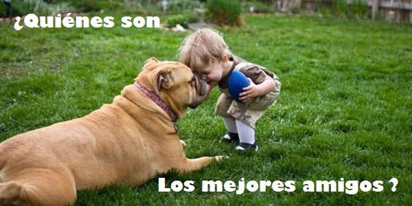 perros-mejores-amigos-enlamovida_1438189759000_alarge